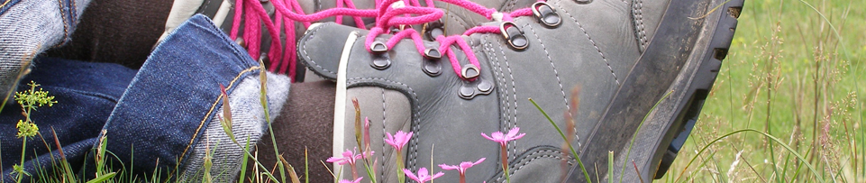 http://www.dagwandeling.nl/assets/images/sliders/wandeling-schoenen.png